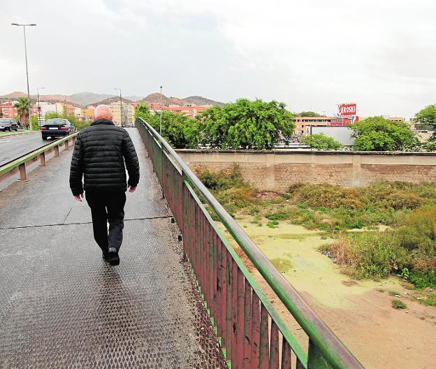 Las lluvias aportan medio riego a hortalizas, cítricos y