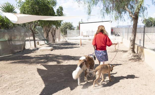 María, ayer, con sus dos canes, en el centro de adiestramiento de la asociación Proyecto Ecan.