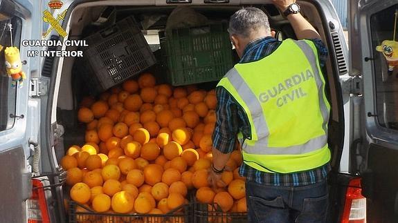 Un agente revisa la fruta robada escondida en el maletero de uno de los coches. /