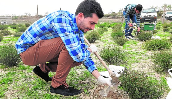 Francisco Arenas y José Eduardo Marqués hacen mediciones y toman muestras en Finca Torrecillas. /